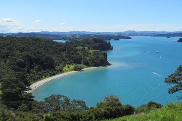 Visite de Matakana et de la campagne au départ d'Auckland