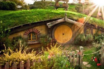 Waitomo Caves and Hobbiton Combo Day