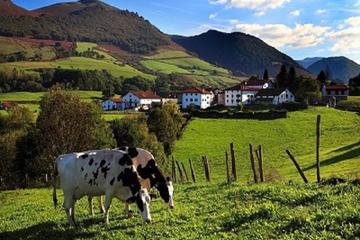 French Basque Country Private Tour from San Sebastian