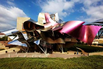 Rioja Alavesa Wineries and Medieval Villages Day Trip from San...