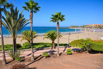 Shore excursion: Self Guided Tour to Playa de las Americas