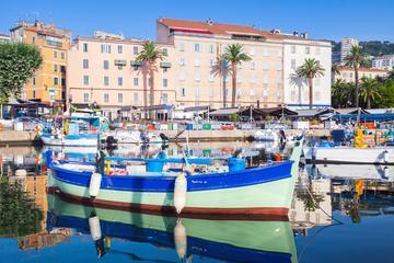 Shore Excursion: Small Group Tour of Ajaccio