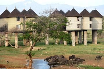9Days Kenya Classic Lodge Safari