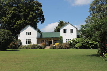 Kiambethu Tea Farm: Day Tour From Nairobi
