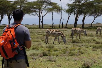 Nairobi Day Trip To Crescent Island Game Conservancy - Lake Naivasha