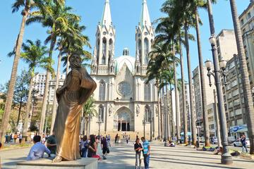 Sao Paulo 5 hours private city tour