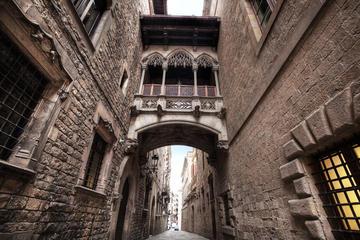 Sagrada Familia og Barcelona seværdigheder: Privat guidet 4-timers...