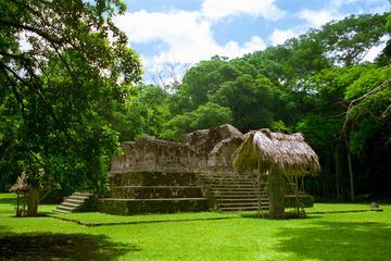 Excursión de un día al yacimiento arqueológico de Ceibal