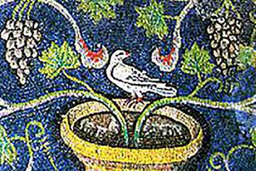Tour giornaliero in treno e bicicletta da Bologna: mosaici e maioliche