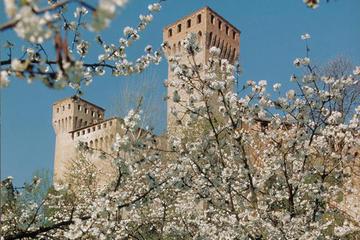 Tour giornaliero in treno e bicicletta da Bologna: vigneti e fortezze