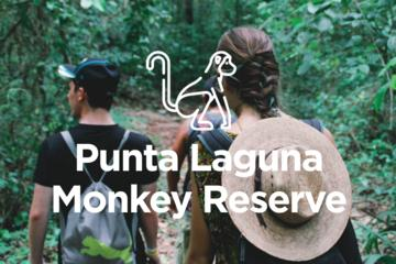 PRIVATE Coba pyramid climbing with monkey reserve and Mayan orchard...