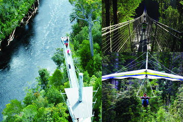 Tahune Airwalk Access with Hang...