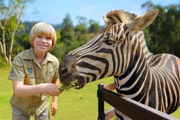 Australia Zoo met Croc Express reisbus