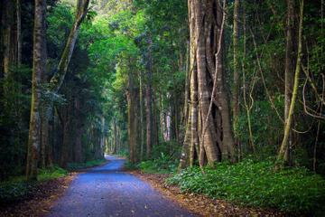 Excursion de 2jours au parc national de Lamington de la famille...