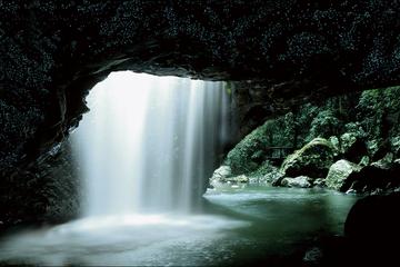 Tour de la grotte des vers luisants et pont naturel au départ de la...
