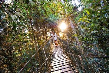 Tour tra le cime della foresta