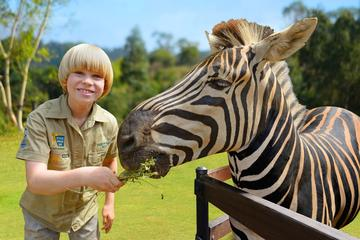 Visita all'Australia Zoo con pullman