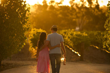 Adelaide Hills and Hahndorf Tour From...