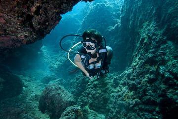 Sortie de plongée sous-marine en...