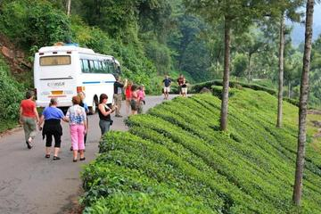 8 Nights 9 Days Experience The Backwaters of Kerala House Boats and Wildlife