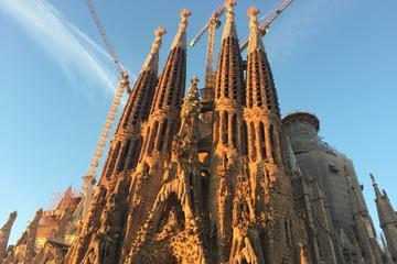 Barcelona Skip-the-Line Gaudi Tour: Sagrada Familia, Park Guell, Casa...