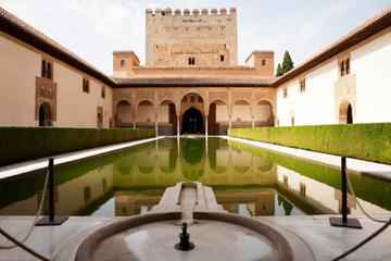 Escursione a terra a Malaga: gita privata di un giorno a Granada con