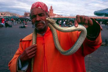 Excursão de 4 dias em Marrocos: Fez, Mequinez, Rabat e Tânger