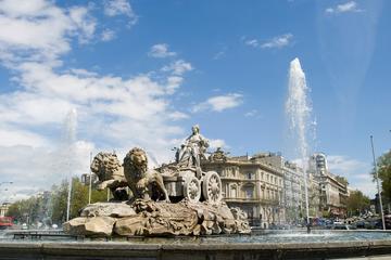 Excursión combinada en Madrid: visita...