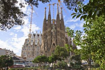 Förtursinträde: Rundtur i Sagrada Familia i Barcelona
