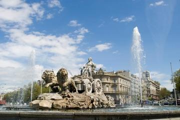 Forfait Madrid: visite de la ville et billet d'entrée coupe-file au...