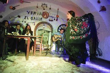 Granada flamencoshow i Albaicin med ...