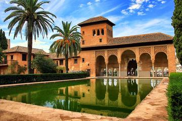 Granada Walking Tour with Alhambra Gardens from Malaga