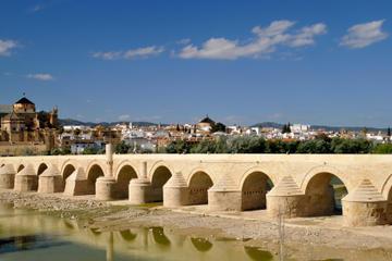 Heldagstur till Córdoba från Málaga