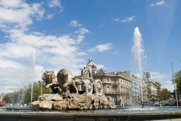 Madrid Combo: tour turistico della città e ingresso saltafila al