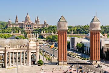 Tour di un giorno in treno a Barcellona da Madrid