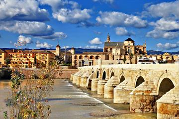 Viagem de um dia até Córdoba, partindo de Costa del Sol