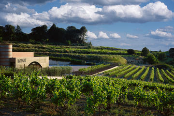 Wine and Cava Tour from Barcelona ...
