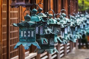 Circuit de Nara dans l'après-midi, avec visite du temple de Todaiji...