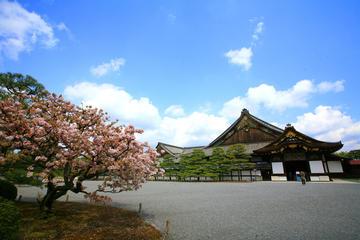 City Tour em Quioto: Pavilhão dourado, Castelo Nijo, Palácio Imperial...