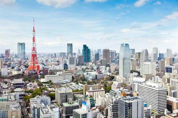 Dagstur med Tokyo Tower, teceremoni och kryssning på Sumidafloden