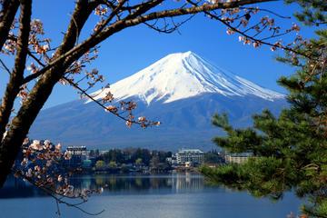 Escapada de un día al Monte Fuji desde Tokio con crucero turístico...