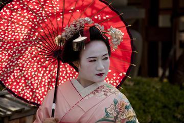 Esibizione di danzatrici maiko e cena con vista sul fiume Kiyotaki