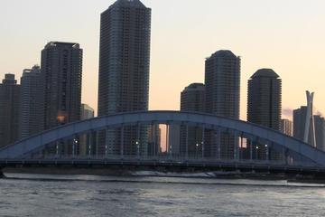 Ettermiddagssightseeing i Tokyo og cruise på Sumidaelven