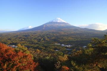 Excursion d'une journée au Mont Fuji et dans la forêt d'Aokigahara au...