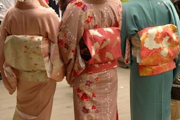Experiência de quimono e excursão a pé em Asakusa