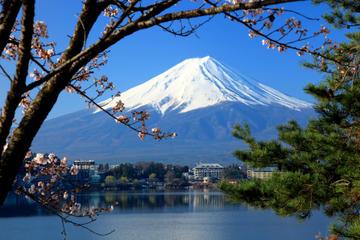 Gita di un giorno al monte Fuji più crociera turistica sul lago Ashi