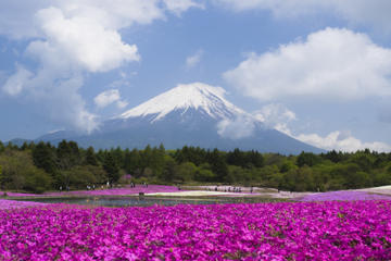 Mt Fuji Trip with Heritage Walking Tour from Tokyo