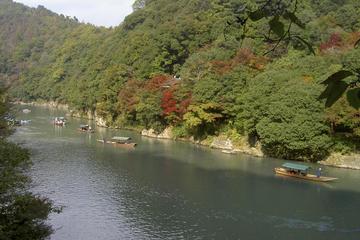 O arvoredo de bambu de Sagano e a excursão a pé por Arashiyama com...