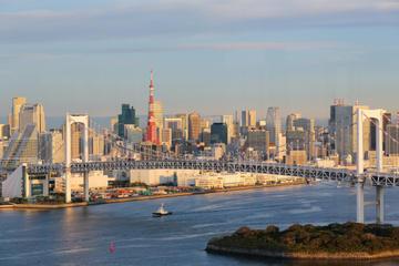 Panoramatur i Tokyo med besøk til Meiji-helligdommen og Asakusa...