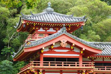 Tour a piedi di Uji con cerimonia del tè da Kyoto
